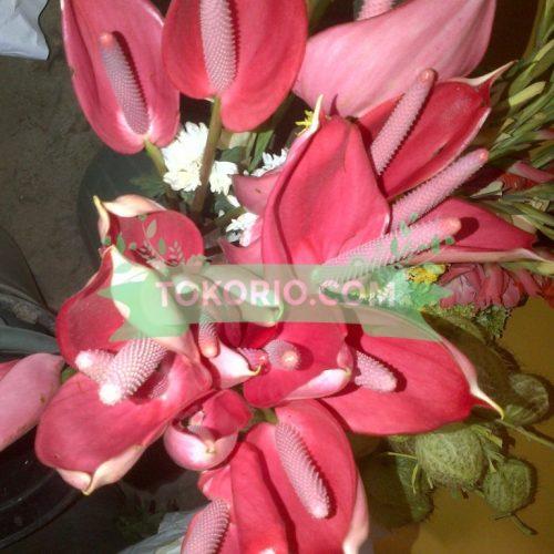 Bunga Potong Jenis Anturium