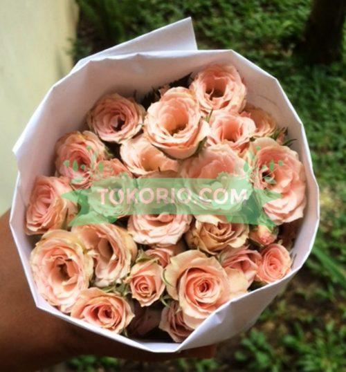 Bunga Potong, Baby Rose, Mawar Mini